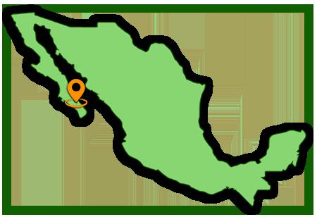 https://www.elnopalspanish.com/wp-content/uploads/2021/08/mexico.png